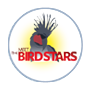 Meet the Bird Stars